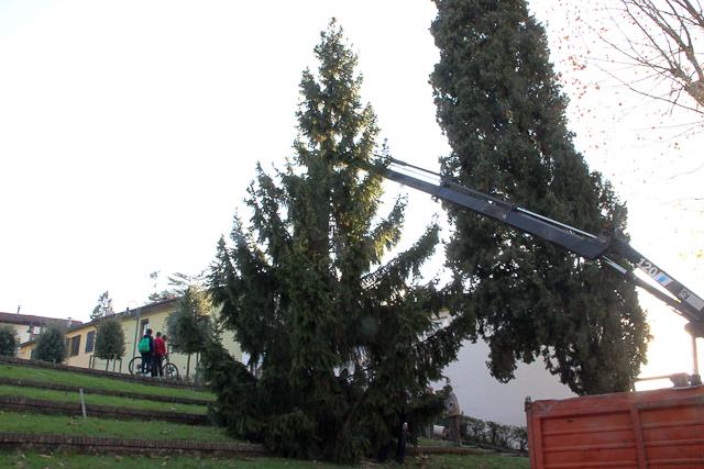 albero-di-natale-91-di-106