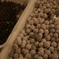 barga-cioccolata-chocolate-barga005.jpg