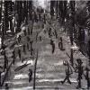 andrea-guzzoletti-invisible-cities-barga-009.jpg