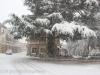 neve-25-di-80