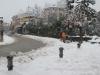 neve-2013-1