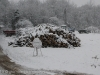 neve-23-febbraio-11-di-64