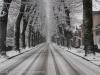neve-23-febbraio-38-di-64
