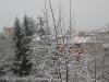 neve-23-febbraio-6-di-64