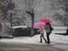 neve-23-febbraio-8-di-64