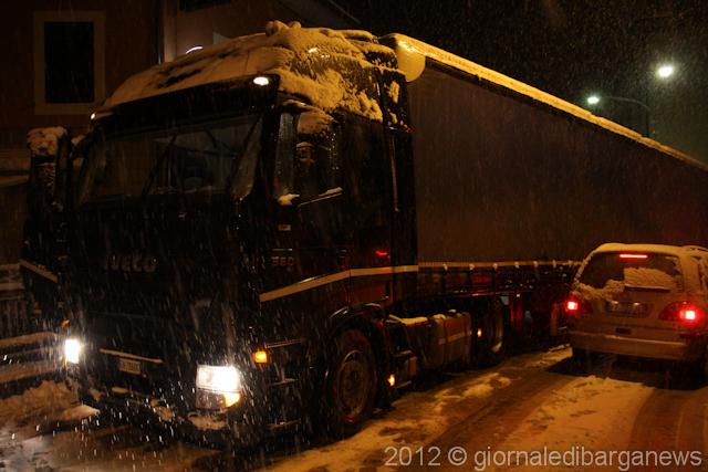 neve-31-gennaio-2012-3035