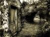 door-in-woods