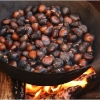 roast-chestnuts-in-barga-2009006
