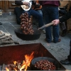 roast-chestnuts-in-barga-2009012