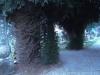 cimitero-sigliari-4