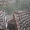 spring-weather-plant-trimming-piazza-salvi-barga-003.jpg