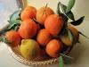 tiglio-fruit