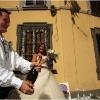 zambonini-early-wedding-in-2009012