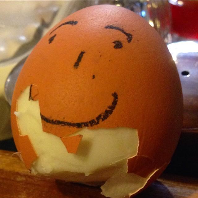 #barga #barganews #daaristo #egg